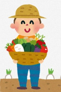 葉物野菜高騰原因は