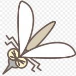 【蚊が嫌う服】この夏に向けて重宝する!
