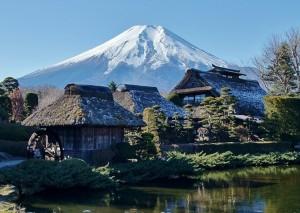 【忍野八海】富士山の雪解け水の湧水が人気!