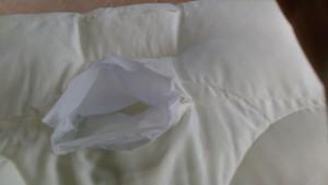 【枕】で肩・首に変化が!
